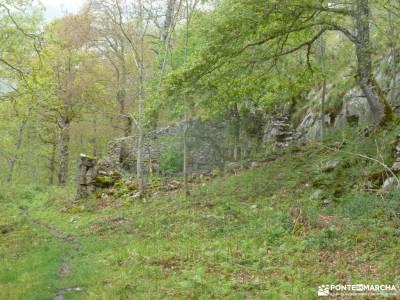 Ruta Cares-Picos de Europa; gr 14 bosque de faedo pico abantos romanico burgos parque natural peneda
